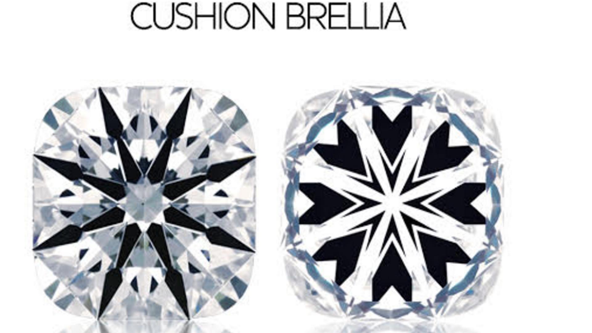 Everything Brellia