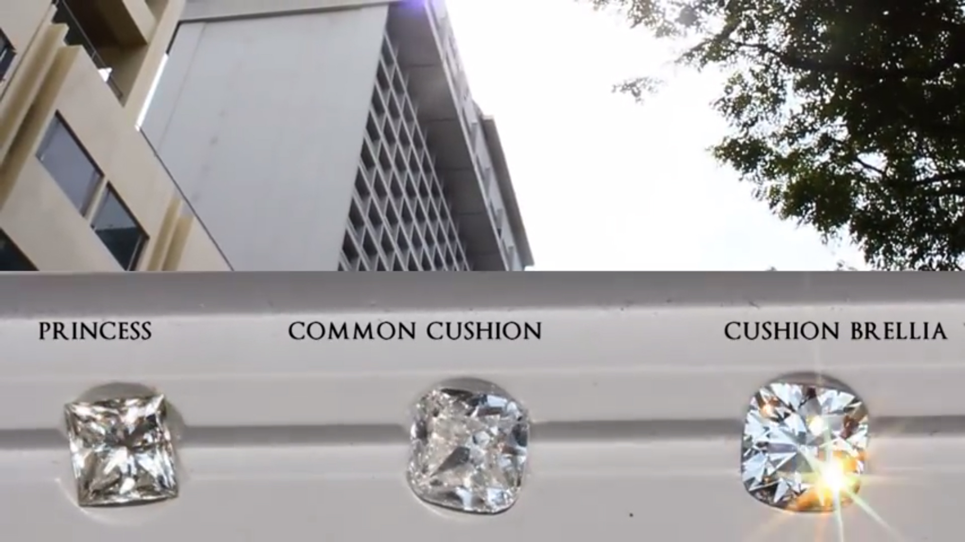JannPaul: Daylight Analysis of the Common Princess Cut, Common Cushion Cut and Cushion Brellia